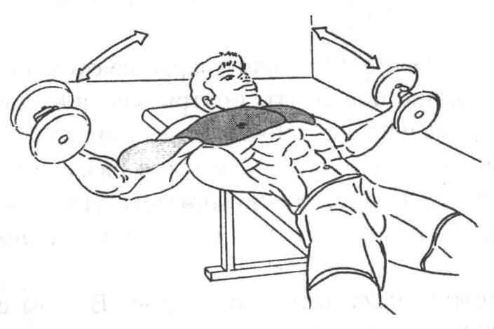 Разводка гантелей лежа на прямой и наклонной скамье