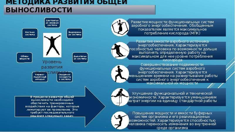 Упражнения на выносливость: как быстро развить силовые и скоростные показатели