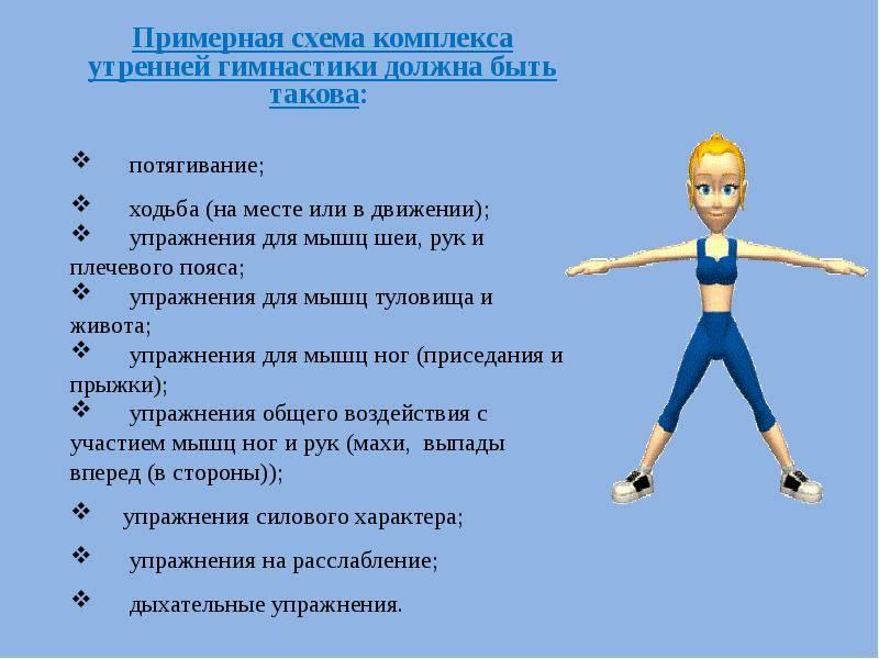 Утренняя зарядка: как делать, какие упражнения выбрать и когда заниматься