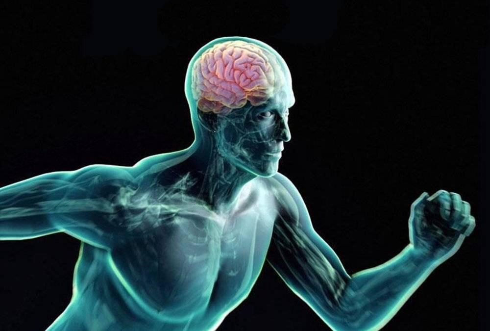 Самовнушение: как запрограммировать мозг?