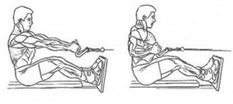 Спина и тяги. горизонтальные и вертикальные