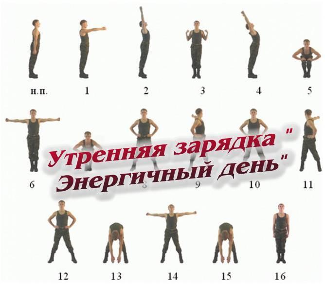 Комплекс упражнений для утренней зарядки на каждый день