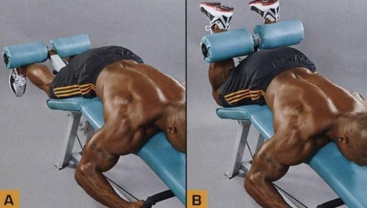 Какие группы мышц лучше совмещать на тренировке