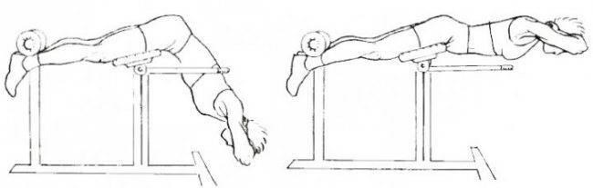 Обратная гиперэкстензия: техника выполнения для ягодиц в тренажере и дома