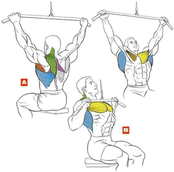 Тяга верхнего (вертикального) блока к груди