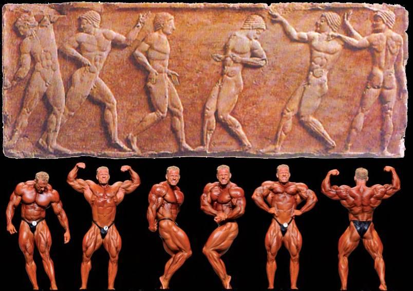 Соревновательные дисциплины в бидибилдинге