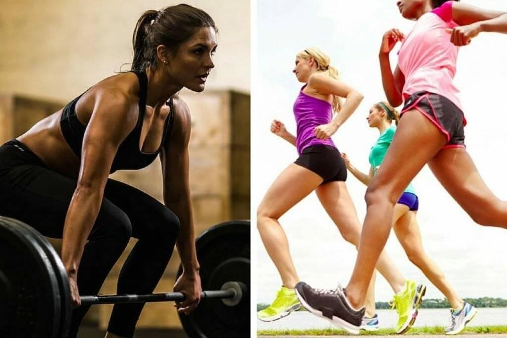 Кардио или силовые для похудения: что лучше? | the base