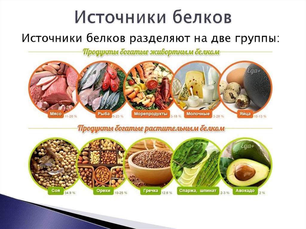 Сколько белка нужно есть в день? - fitlabs / ирина брехт