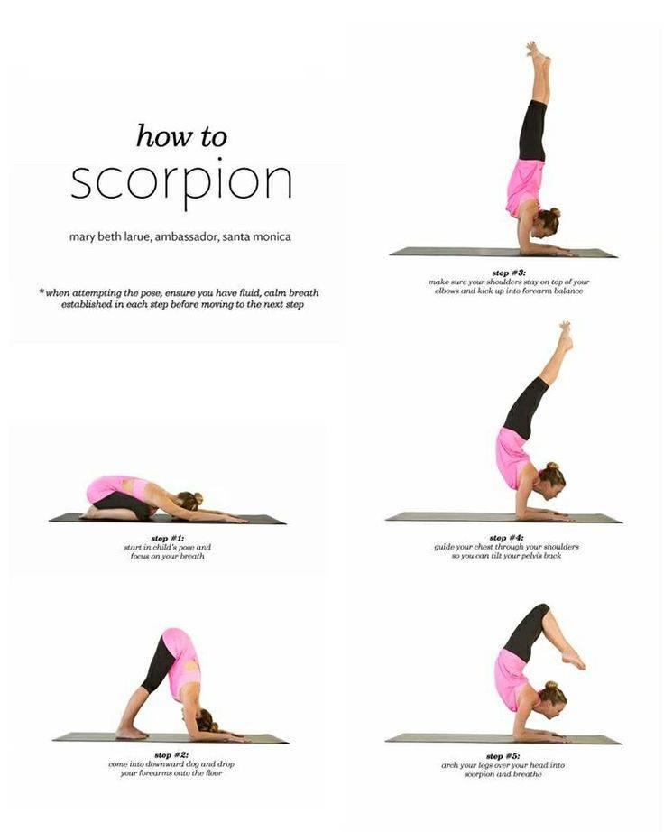 Топ 21 асан позиция: йога для начинающих в домашних условиях и упражнения