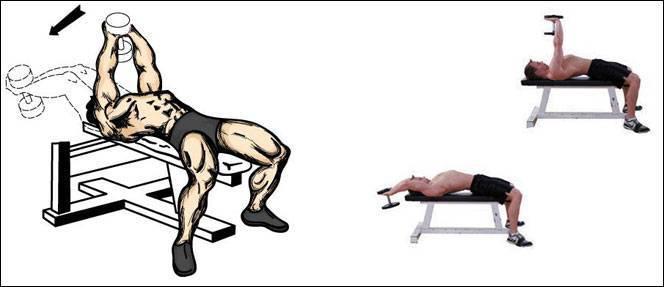 Как девушке накачать спину в домашних условиях и подтянуть мышцы