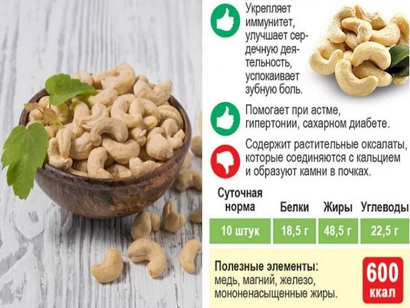 Орехи при похудении — 3 механизма снижения веса, какие и сколько можно есть на диете
