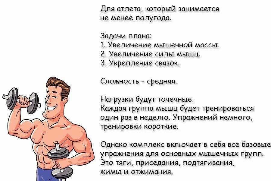 Базовые упражнения для набора мышечной массы и изолирующие для рельефа