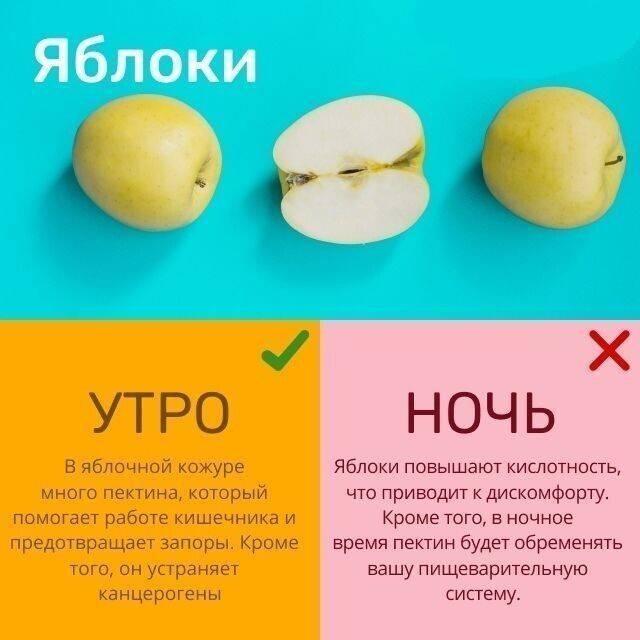 Можно ли есть фрукты сразу после еды или когда лучше есть фрукты без вреда для здоровья - полонсил.ру - социальная сеть здоровья - медиаплатформа миртесен