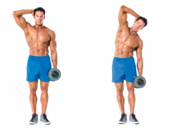 Наклоны с гантелями в стороны: упражнение для талии и пресса