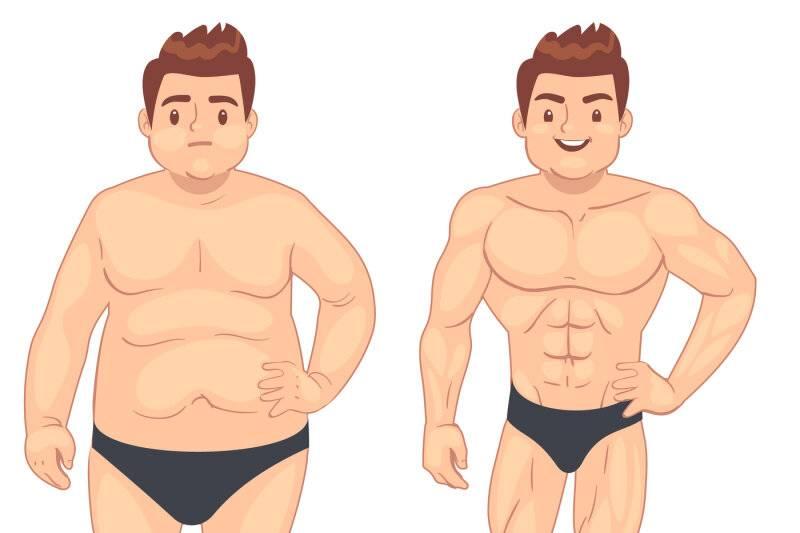 Можно ли жечь жир и растить мышцы одновременно? - fitlabs / ирина брехт