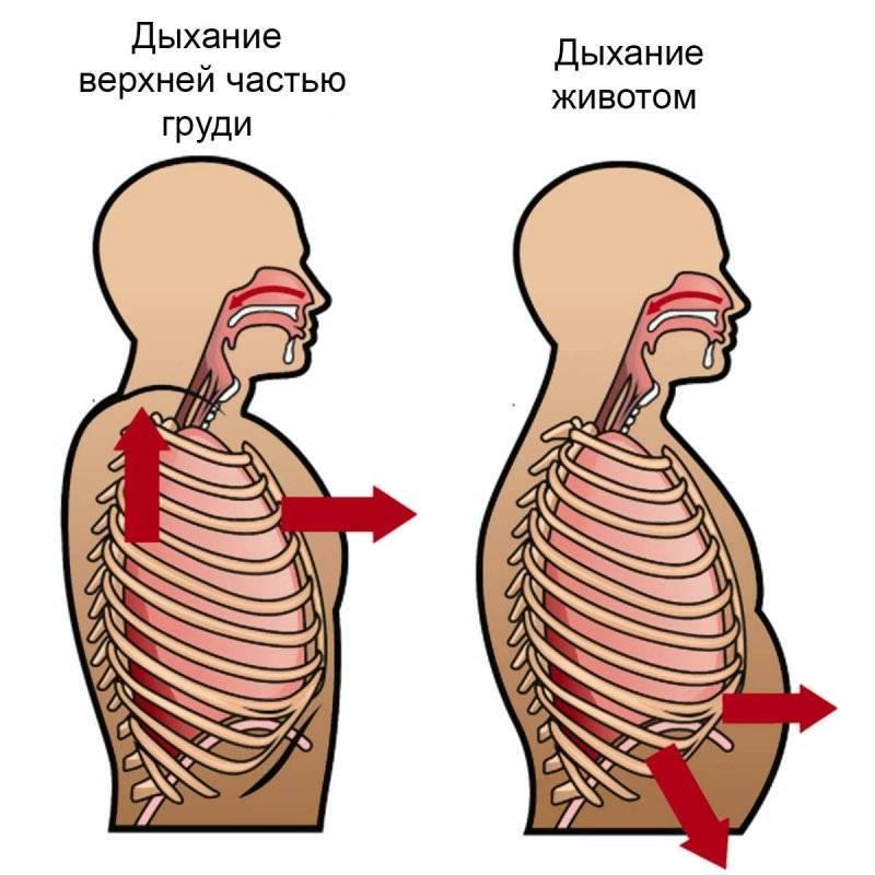 Деформации грудной клетки - лечение, симптомы, причины, диагностика | центр дикуля