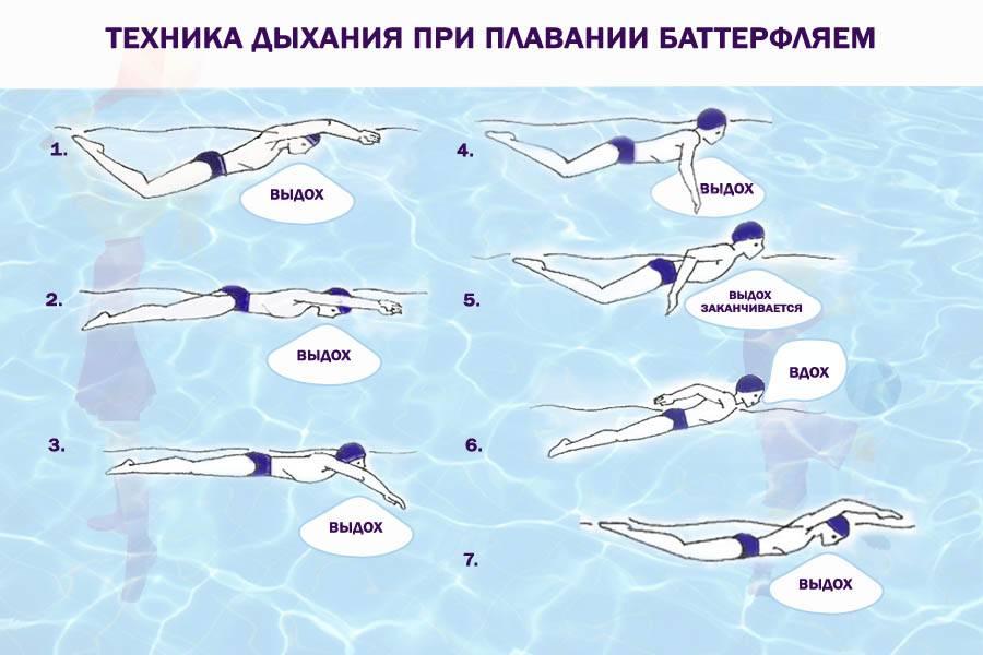 Кроль на спине: техника плавания, как правильно плавать этим способом, советы для начинающих, нюансы стиля и видео