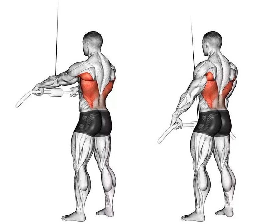 Тяга рейдера: техника, какие мышца работают, принципы и пошаговое выполнение