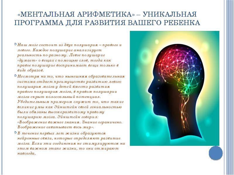 Связь мышц с мозгом