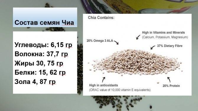 Семена чиа - полезные свойства, состав и противопоказания (+ 14 фото)