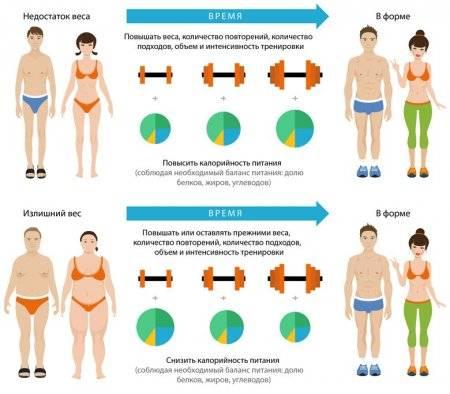 Как быстро набрать вес?   musclefit