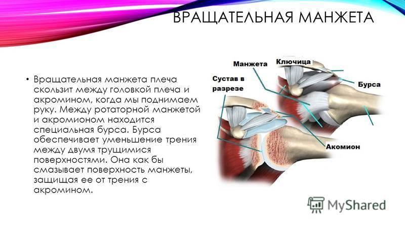 Укрепляем стопы и голеностопы: эффективный комплекс упражнений - нолтрекс.