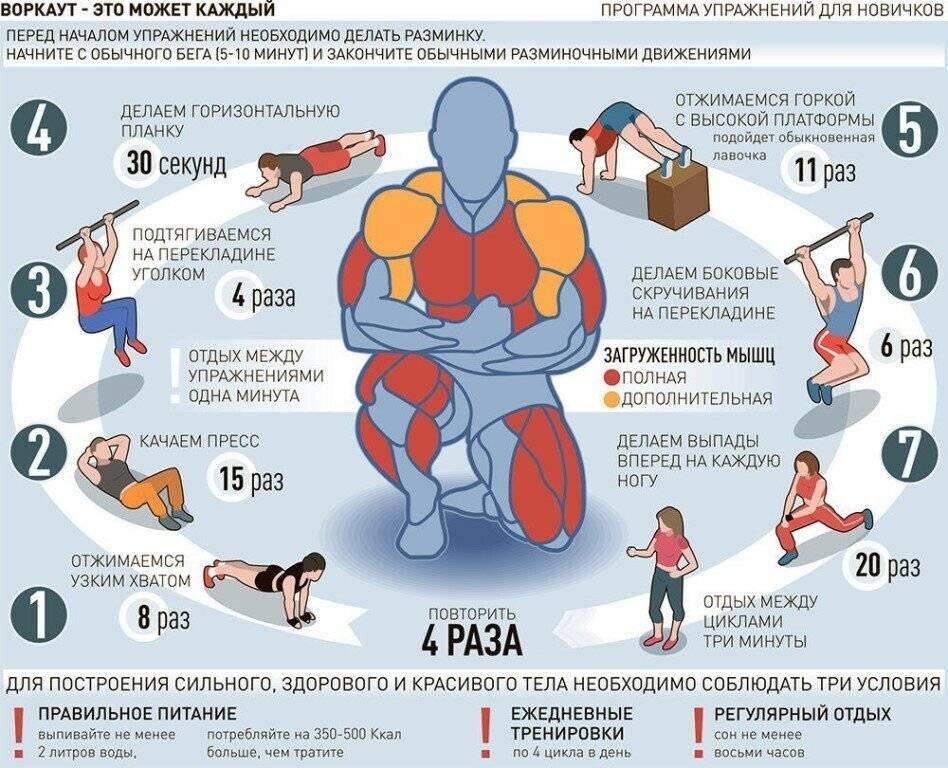 Сколько раз в неделю нужно заниматься фитнесом, чтобы был результат: как часто можно тренироваться, чтобы похудеть, подтянуть тело
