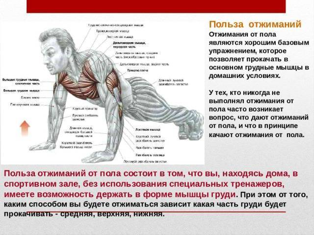 Отжимания на грудные мышцы