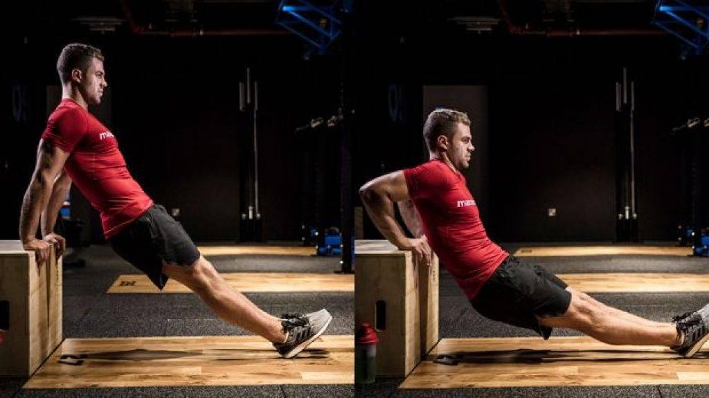 Обратные отжимания от лавки - всё о спортивных тренировках