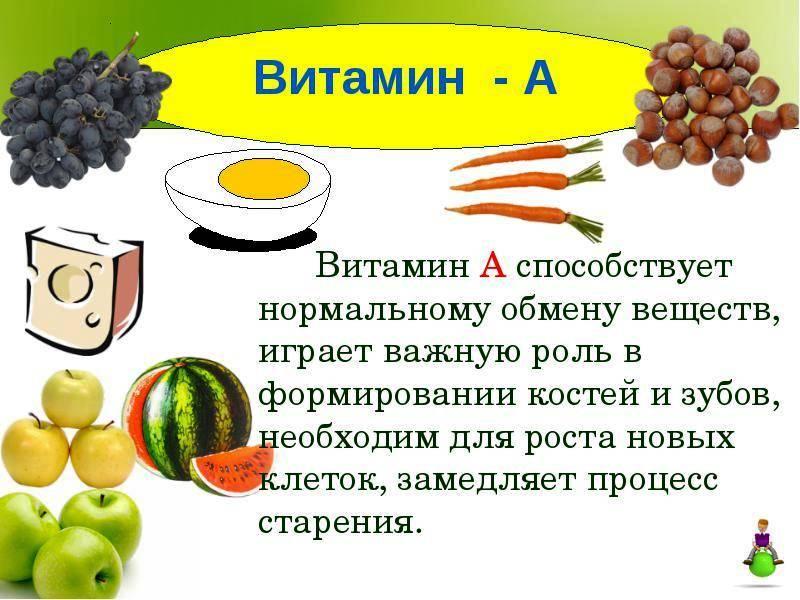 Витамин а: в каких продуктах его много и чем опасна передозировка // нтв.ru