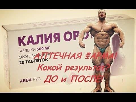 Калия оротат (potassium orotate)