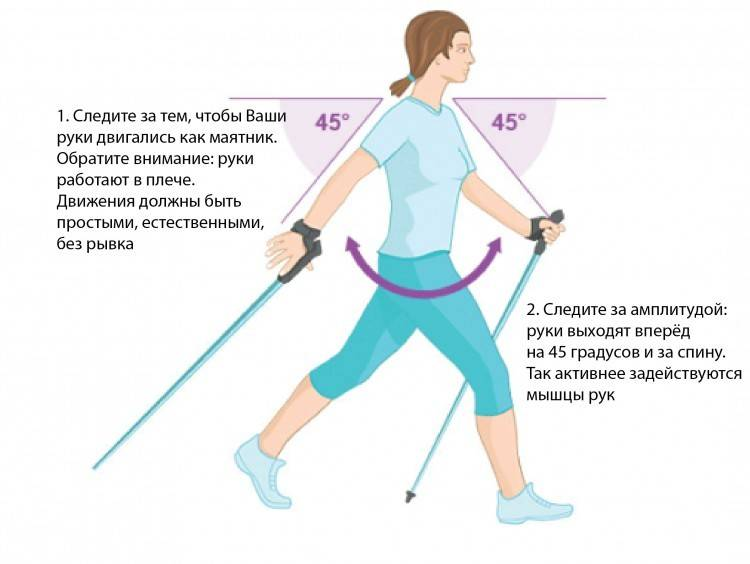 Скандинавская ходьба с палками: польза и вред, противопоказания и техника - правила разминки и правильного дыхания для начинающих и пожилых