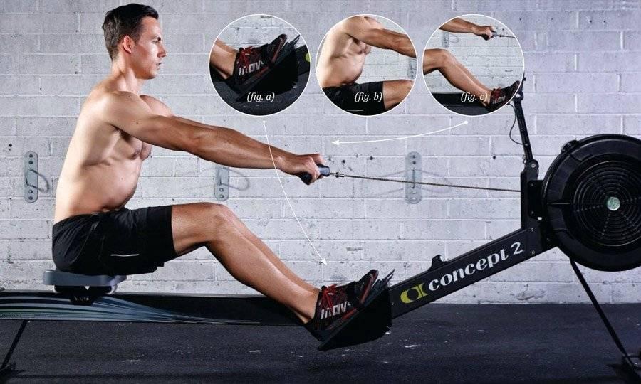 Тренировки на гребном тренажере: как похудеть и сделать тело рельефным. — power-fit