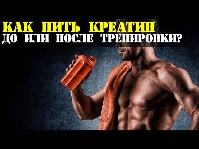 Как и когда принимать протеин: советы по употреблению спортпита