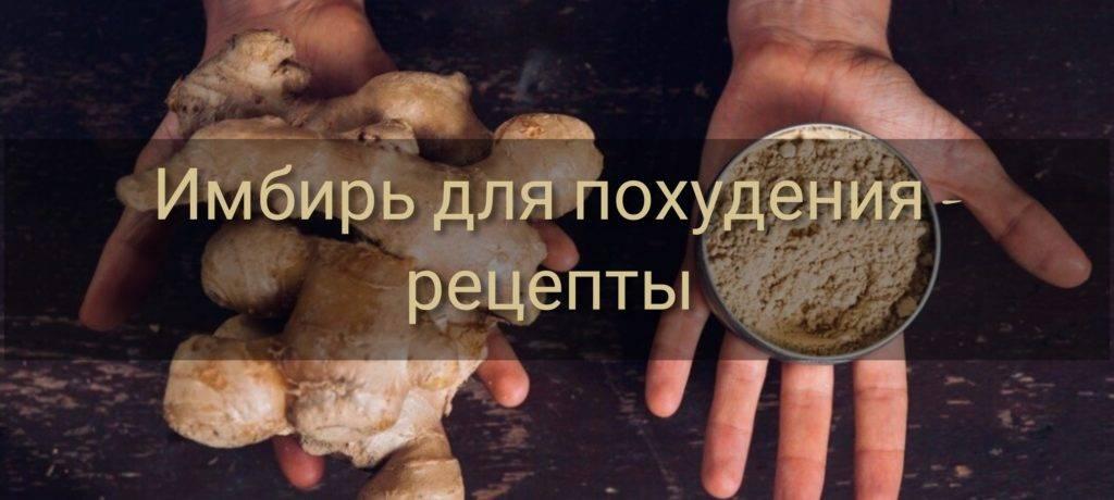 Смесь из имбиря и лимона для похудения: рецепты приготовления с огурцом, яблоком и другие, а также как ее принимать и можно ли с помощью этого способа сбросить вес? русский фермер