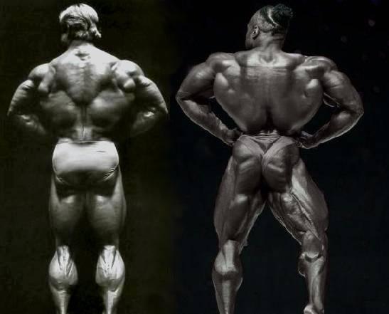 Интервью с томом платцом на bodybuilding.com, 2009