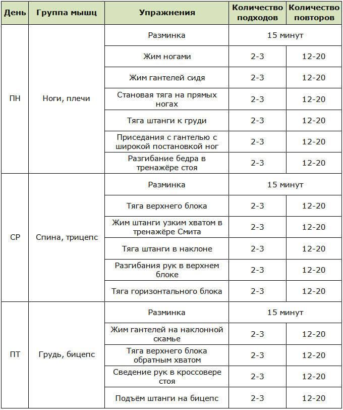 Сплит тренировка: двухдневная, трехдневная и четырехдневная программа на массу для мужчин и девушек