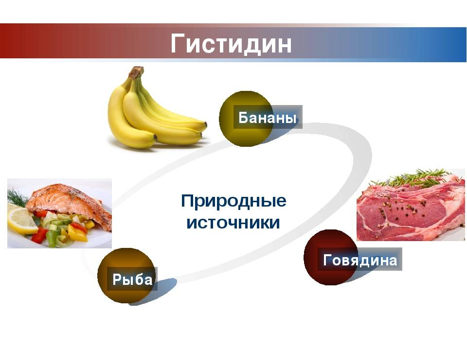 Гистидин: функции, свойства и пищевые источники   food and health