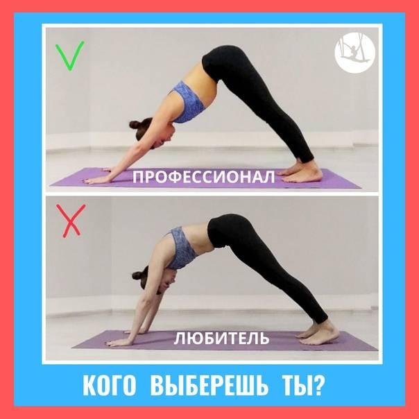 11 способов улучшить позу собаку мордой вниз   smartyoga: йога для здоровья и йогатерапия в москве