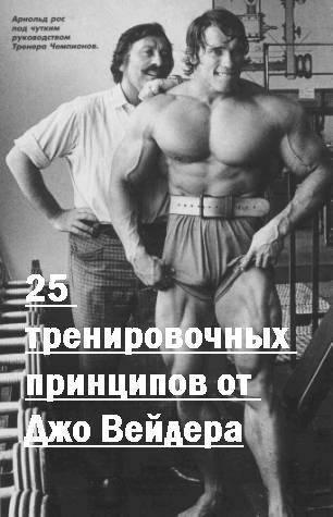Вейдер джо. система строительства тела