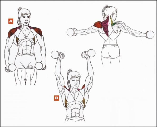 Как похудеть в руках: тренировки и питание