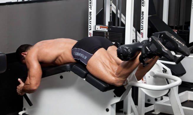 Упражнения на мышцы ног для мужчин и женщин в тренажерном зале