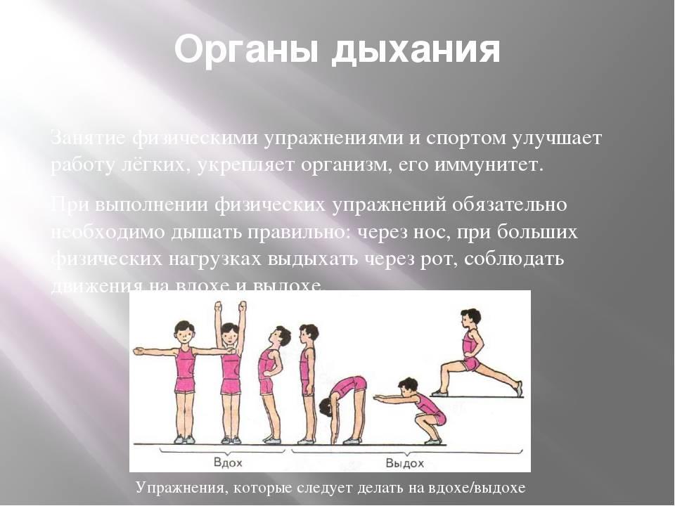Как правильно дышать при выполнении физических упражнений