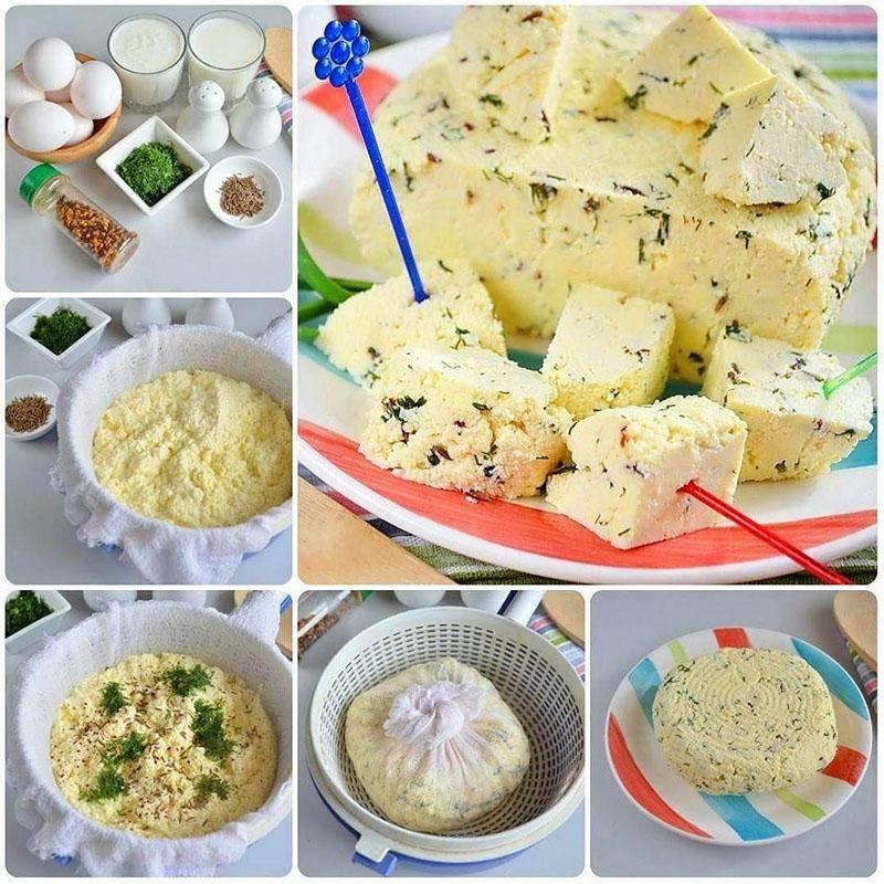Плавленый сыр из творога в домашних условиях готовим профессионально. праздник вкуса с рецептами плавленого сыра из творога в домашних условиях
