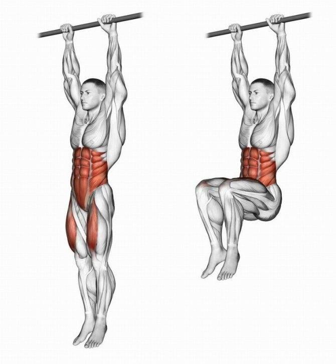 Подъем ног в висе на перекладине — fit4gym - бодибилдинг и фитнес для начинающих