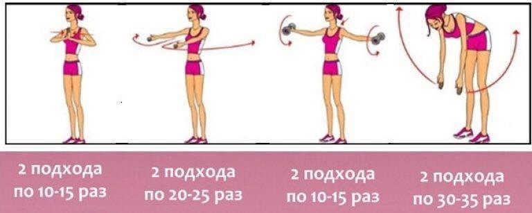 Упражнения на грудь - ? сеты, и программы тренировок от топ атлетов
