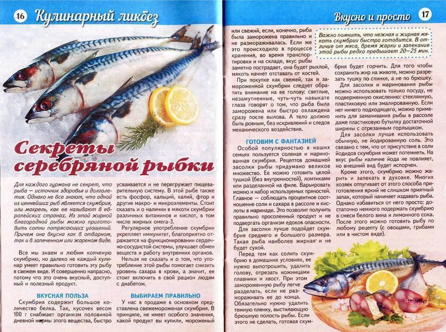 Как солить красную рыбу: лучшие рецепты в домашних условиях
