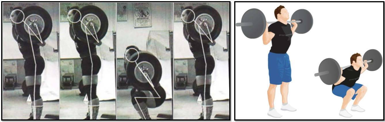 Приседания со штангой для девушек: техника выполнения