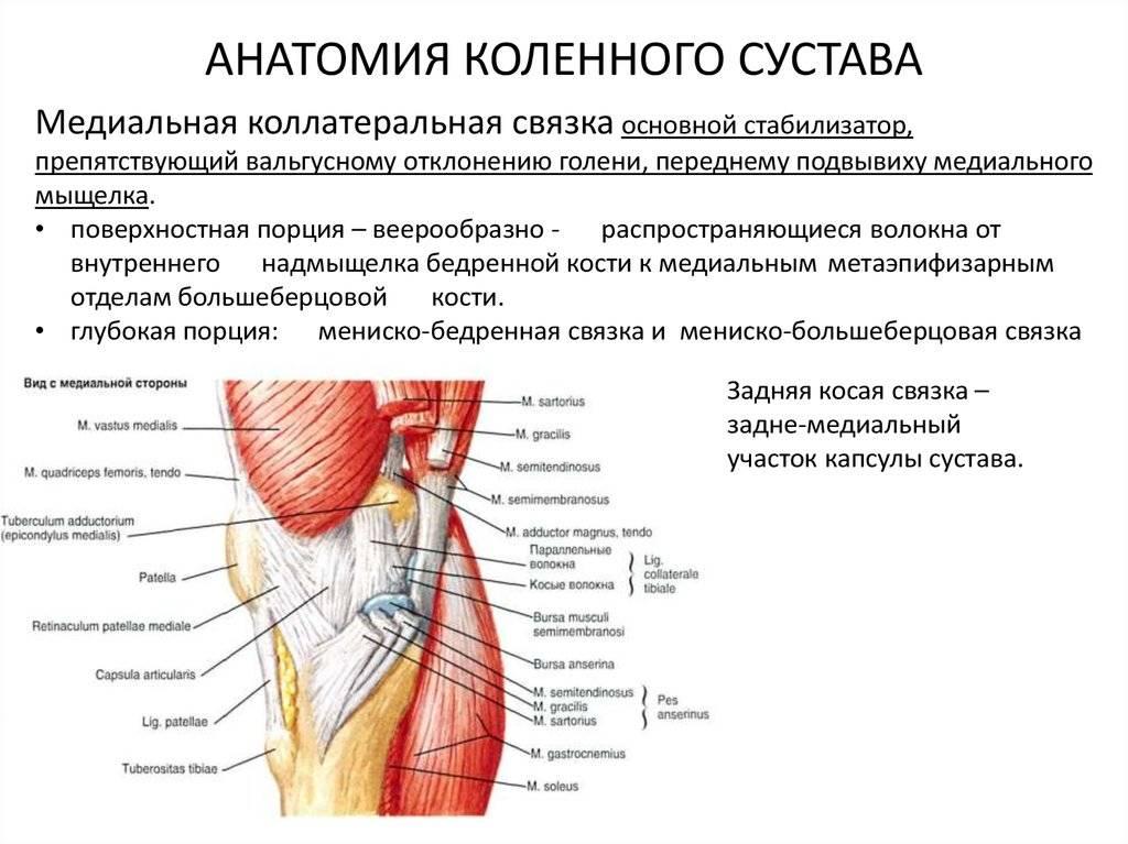 Укрепляем стопы и голеностопы: эффективный комплекс упражнений