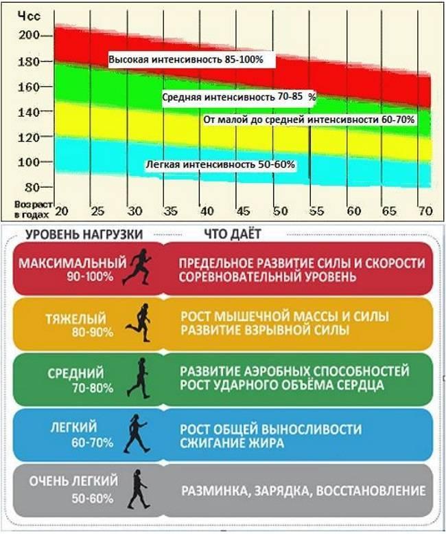 Расчет оптимального пульса для жиросжигания: гендерные особенности